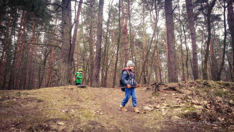 fotografia dziecięca, portret reportażowy, sesja plenerowa w lesie