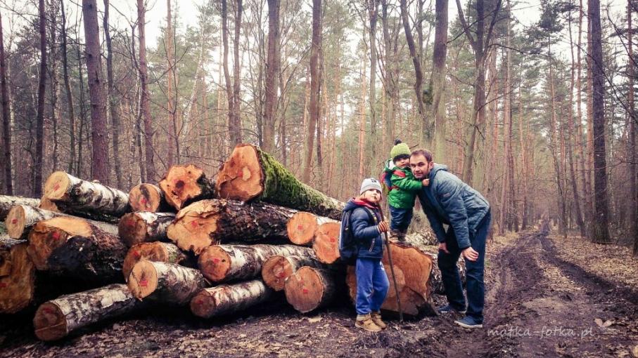 fotografia rodzinna, portret, sesja plenerowa w lesie